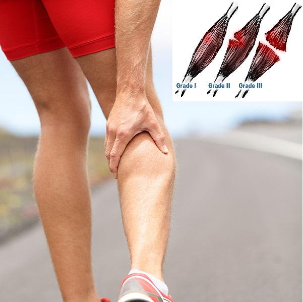 en las lesiones musculares: