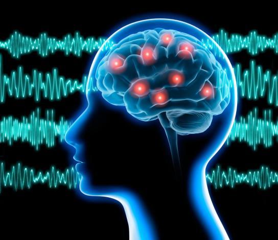 Epilepsia_principal_enfermedad_neurológica.jpg
